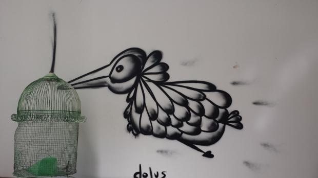 DOLUS 4